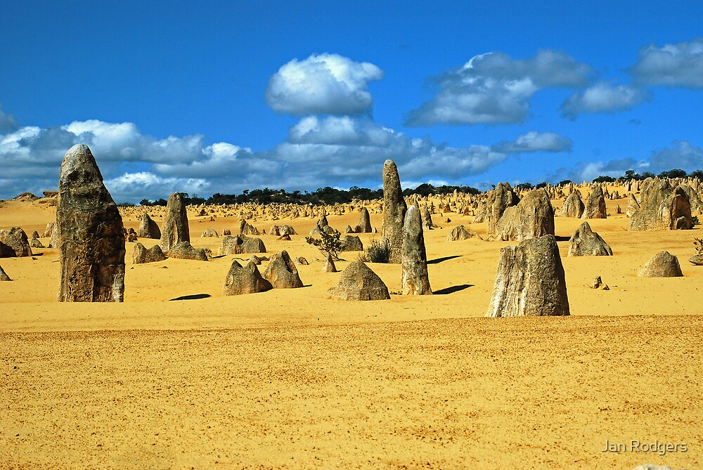 The Pinnacles Desert, WA by Janette Rodgers