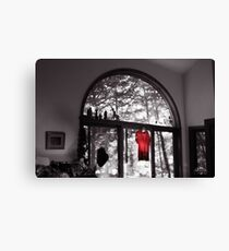 Red Shirt in an Arched Window Canvas Print