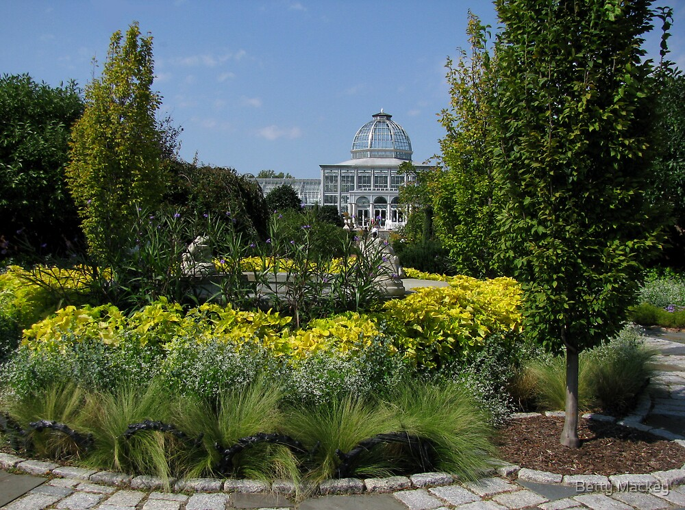 Conservatory, Lewis Ginter Botanical Garden by Betty Mackey