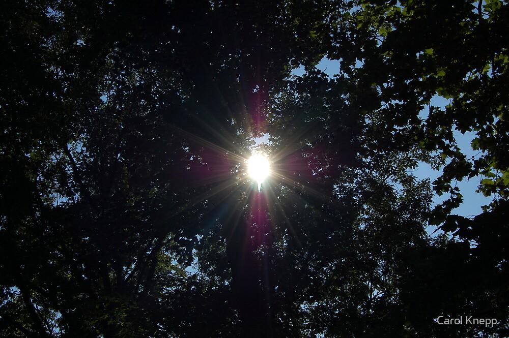 The sun peeking through by Carol Knepp