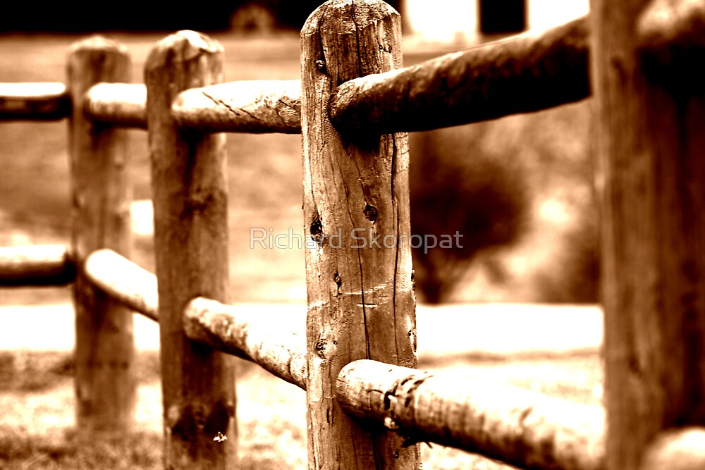 Country Fence by Richard Skoropat