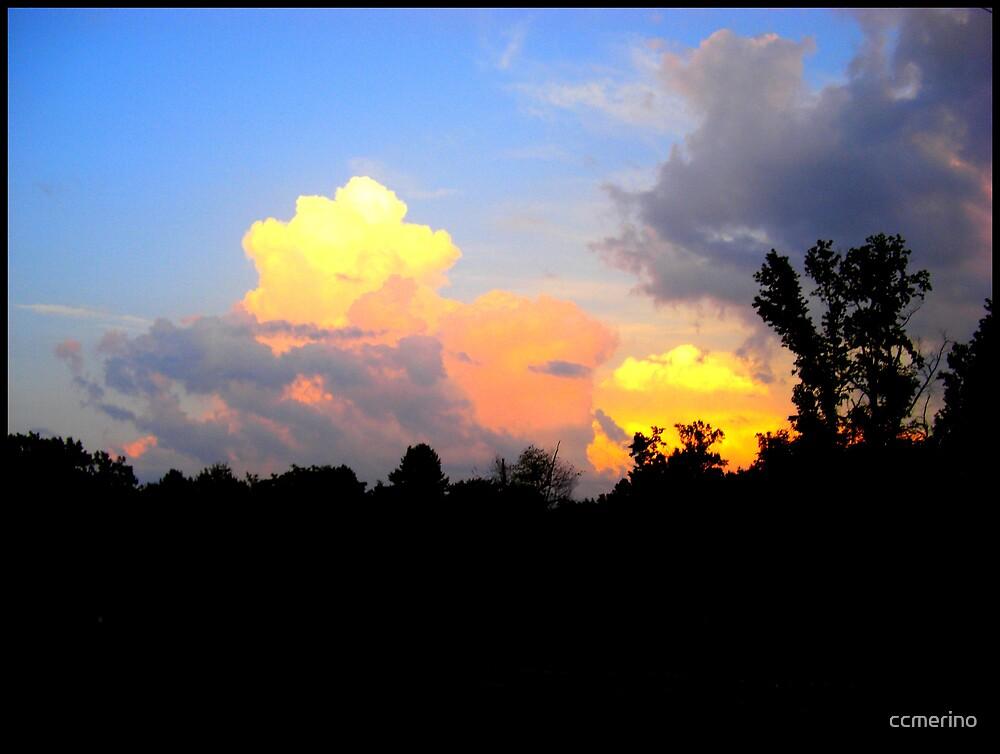 Bold Skies by ccmerino
