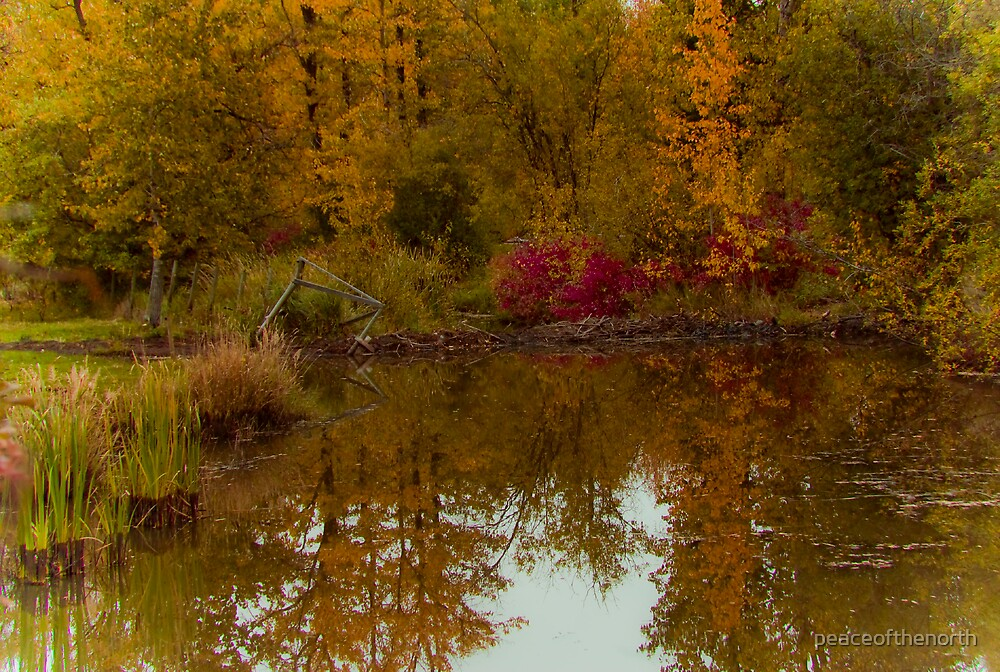Autumn's Pond by peaceofthenorth