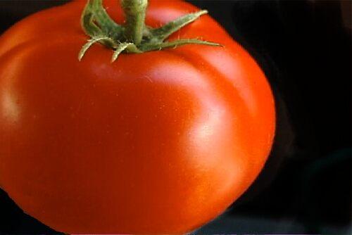 tomato by Kathy Smith