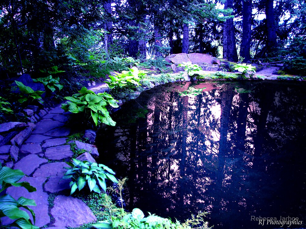 Reflecting Pool by Rebecca Jarboe