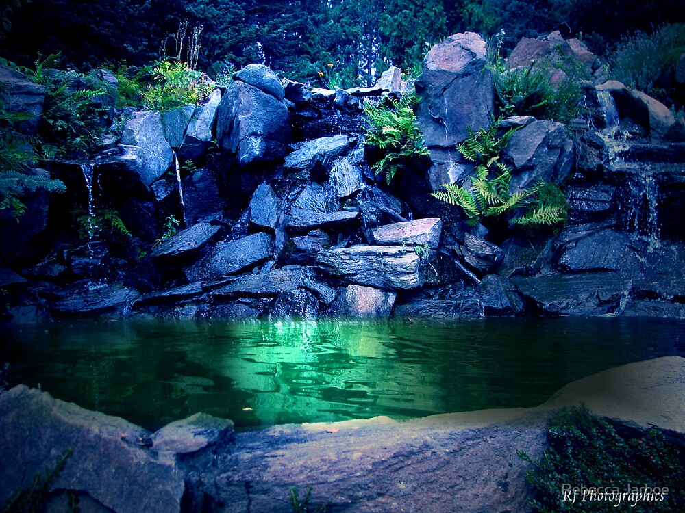 Reflecting Pool #3 by Rebecca Jarboe