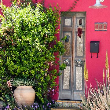 Tucson Door by GVAZDesigns