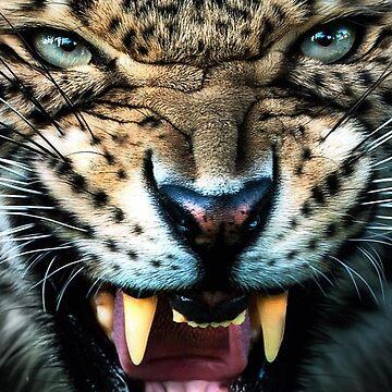 Cheetah Photograph, Angry cheetah, lion by EarthlyIndigo