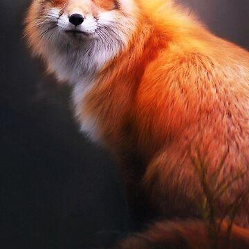 Red Fox, Autumn Fox by EarthlyIndigo