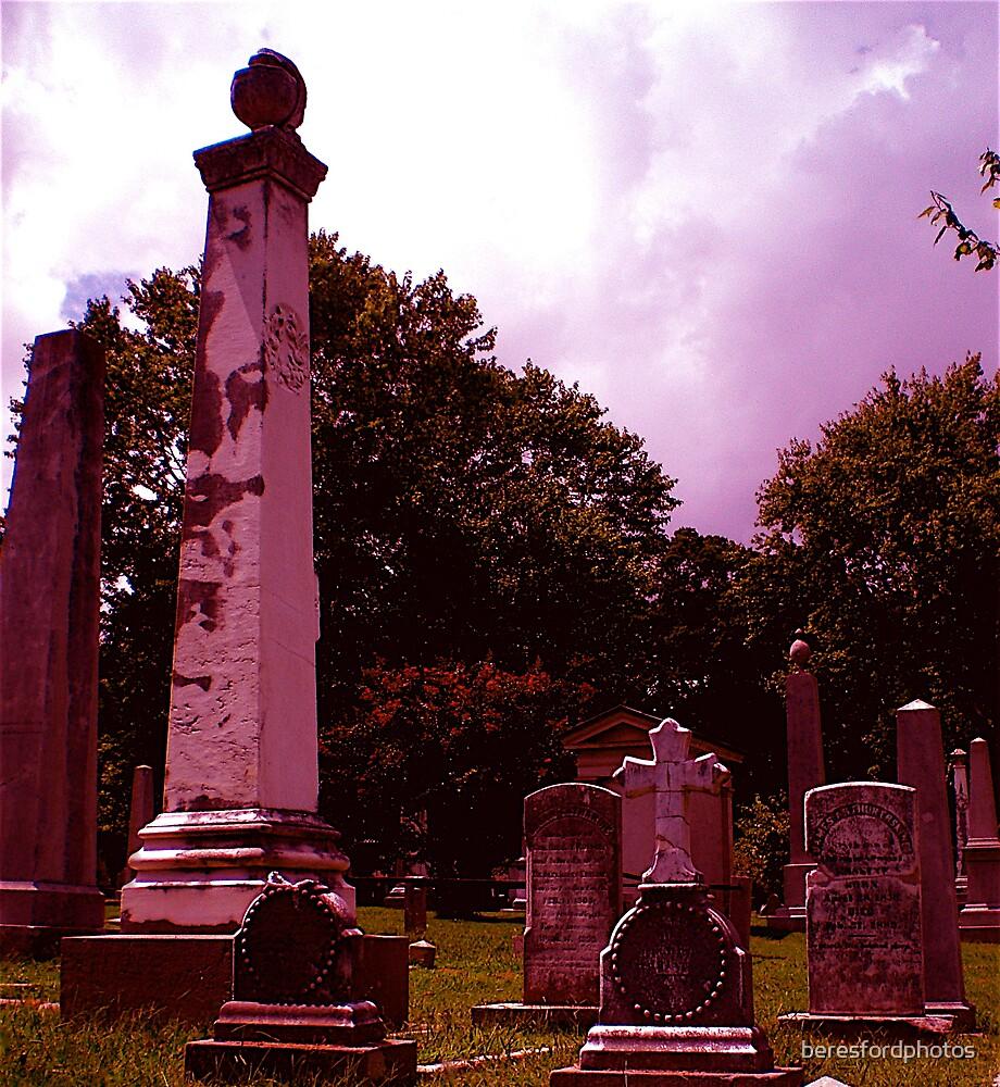 Purple Haze by beresfordphotos
