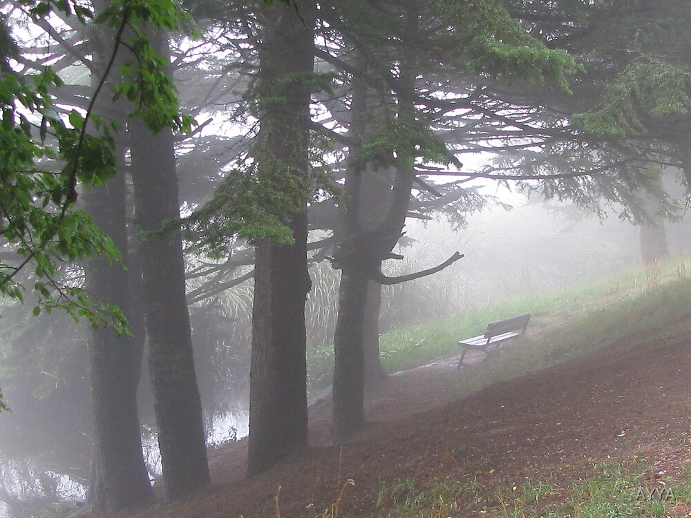 lonliness in a foggy day by AYYA