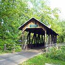 Boy Scout Bridge- 2009 by debbiedoda