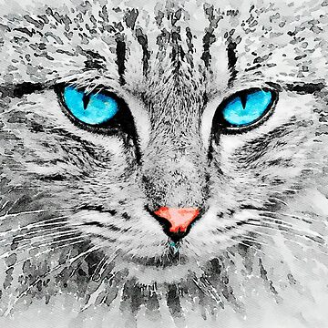 Grey Cat with Blue Eyes by leonwoods
