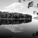 Lake Tabourie for Eric by Catherine Davis