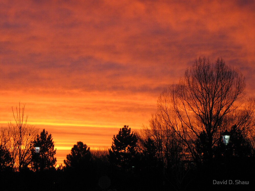 Sunrise by David Shaw