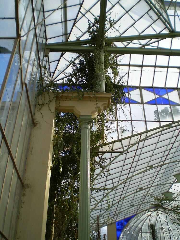 Adelaide Botanic Gardens by minerva13