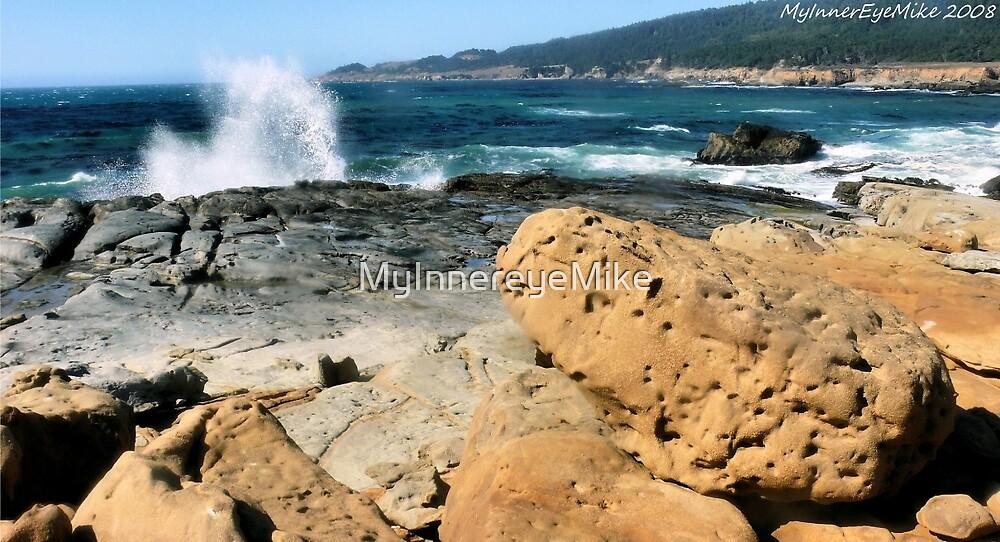 #579   A Splash Of Sonoma by MyInnereyeMike