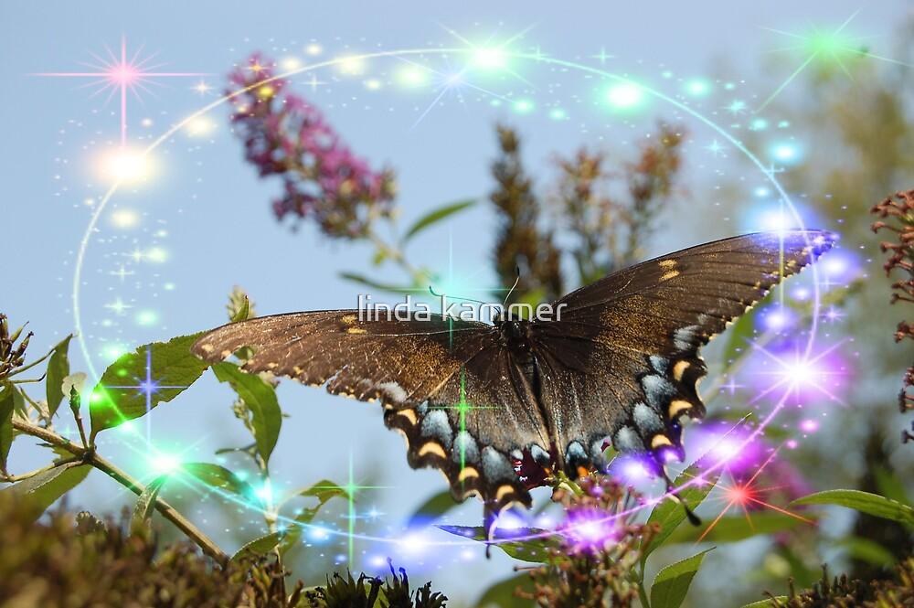 glider by linda kammer