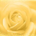 goldene Rose von hurmerinta