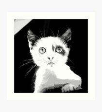 gxp cute cat blue eyes vector art black white Art Print