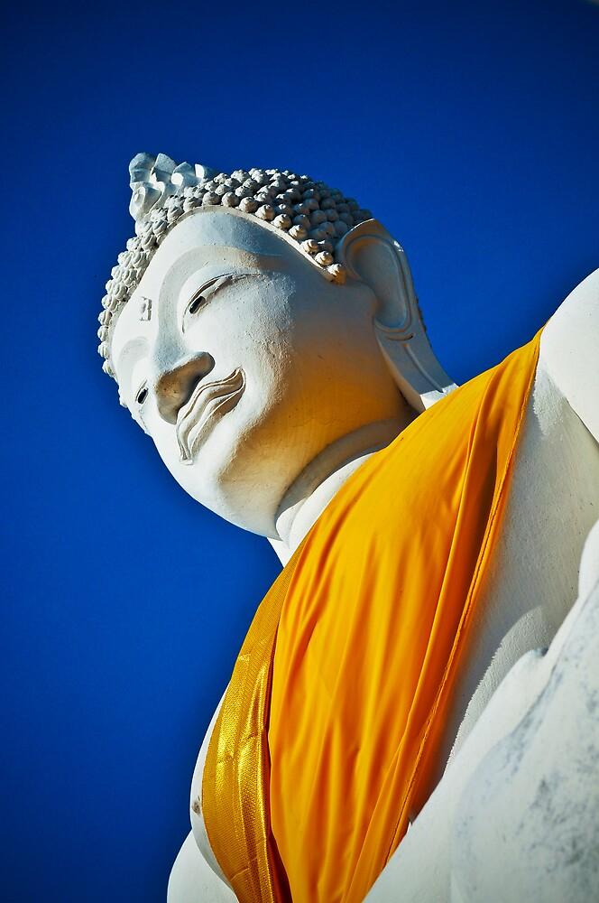 Budhha Statue Ayuthaya Thailand by ThaiDailyPhotos