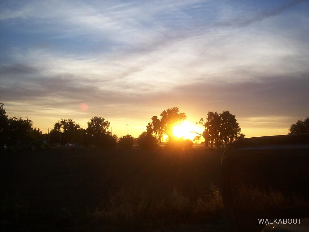 sun set in yolo by WALKABOUT