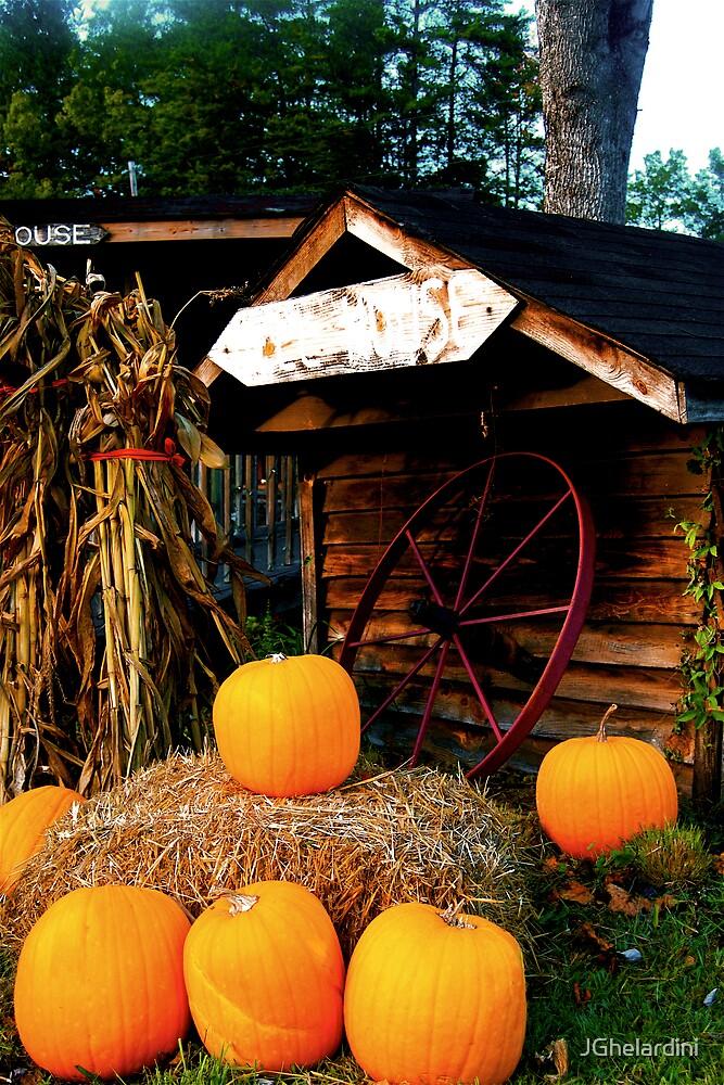 Pumpkins sitting on the Hay by JGhelardini