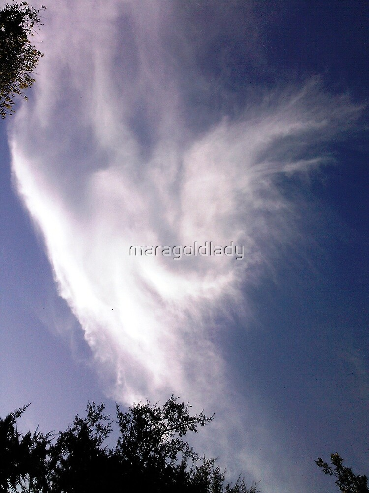 Lisa's Angel by maragoldlady