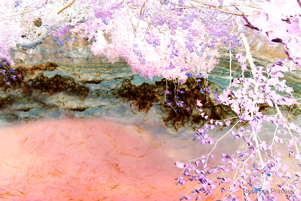 Fantasy Cove by Rabecca Primeau