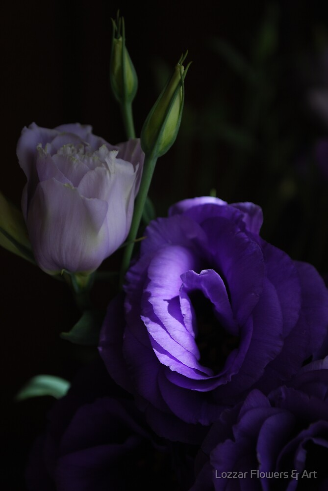 Purple and mysterious lithianthus by Lozzar Flowers & Art