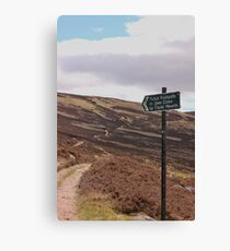 Path from Loch Muick to Glen Clova. Canvas Print