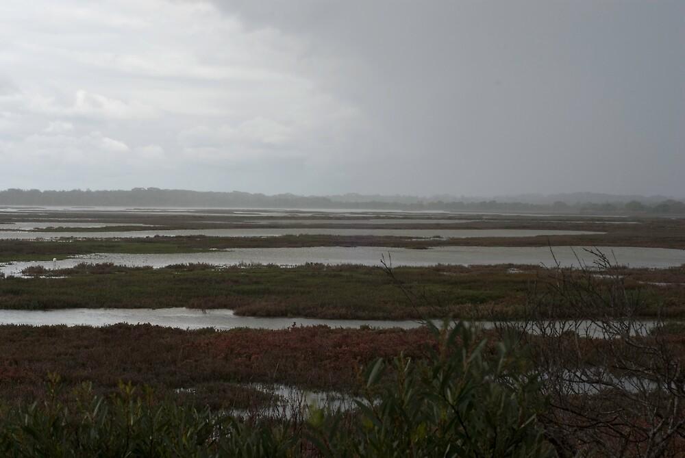 Distant rain by Garry Roberts