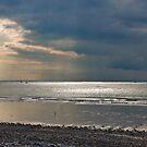 Light on the Sea by Adri  Padmos
