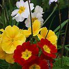 Flowers in a bunch by Lozzar Flowers & Art