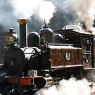 The Power Of Puffing Billy by Ronald Rockman