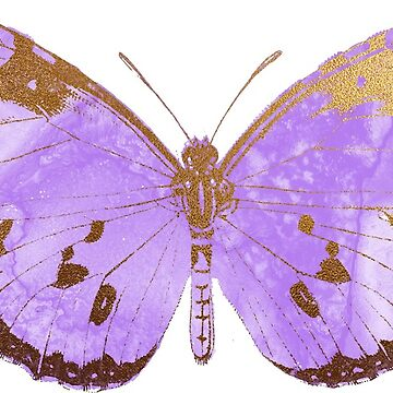 Pretty Purple Butterfly by EarthlyIndigo