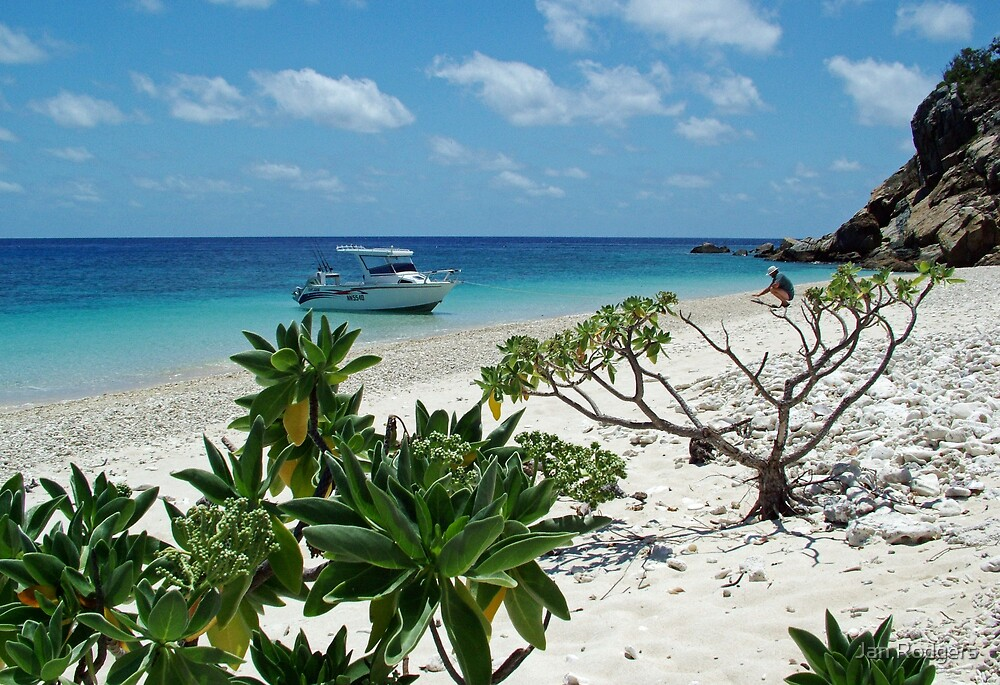 Holbourne Island Australia by Janette Rodgers