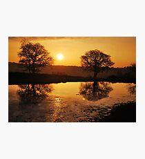 New Forest Sunrise Photographic Print