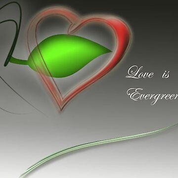 love by zaryab