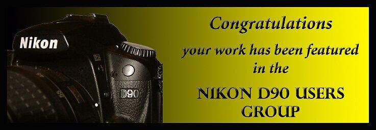 Nikon  by Rod Wilkinson