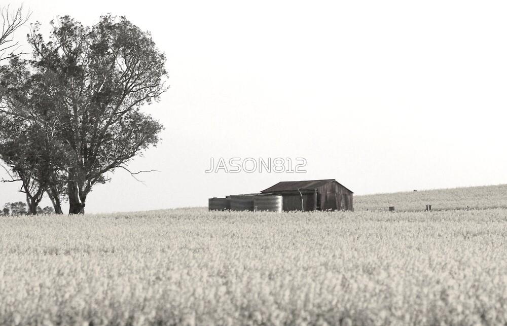 Alone by JASON812