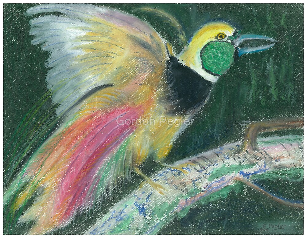 Bird of Paradise by Gordon Pegler