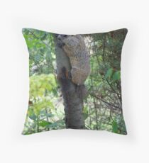 Groundhog in a tree Throw Pillow