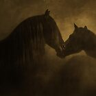 Friesians by Kristi Johnson