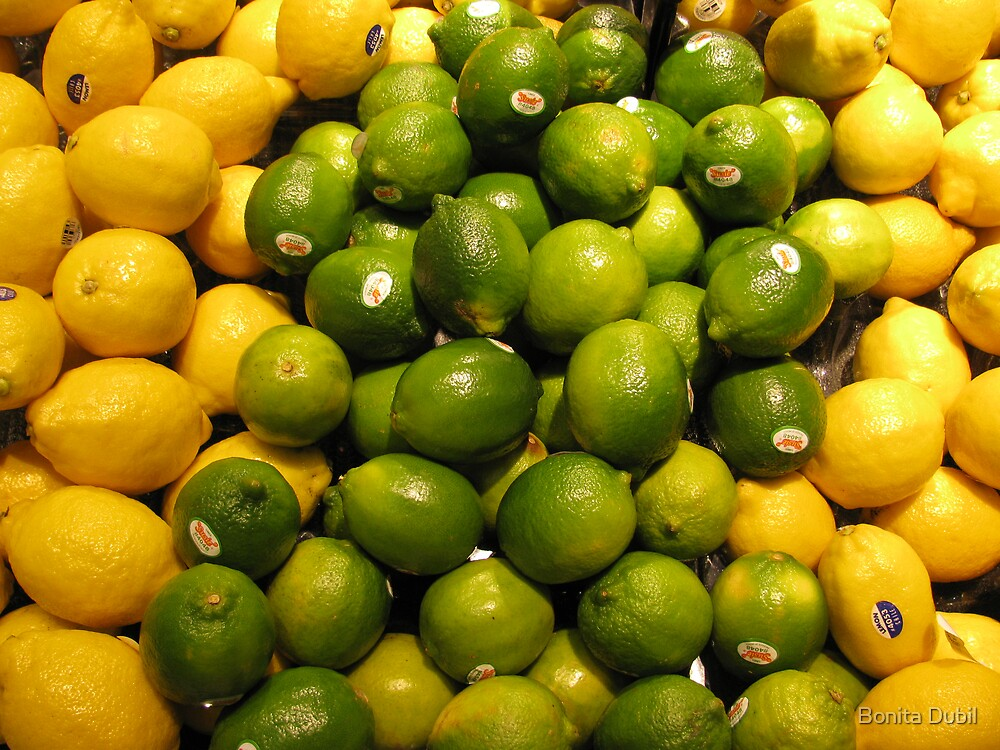 Lemons and Limes by Bonita Dubil