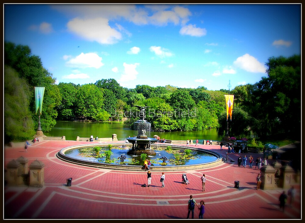 Central Park NYC by Jackie Barefield