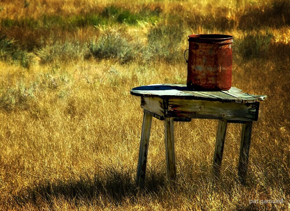Rusty Bucket by pat gamwell