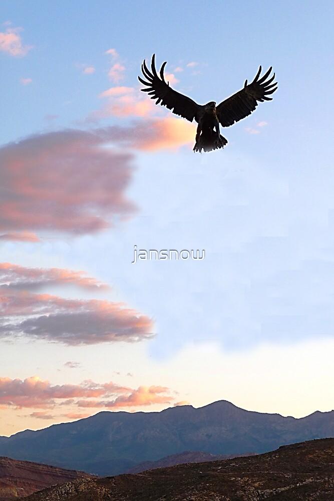 Raptor Grandure © by jansnow