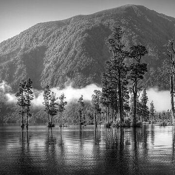Lake Brunner by PaulaMcManus
