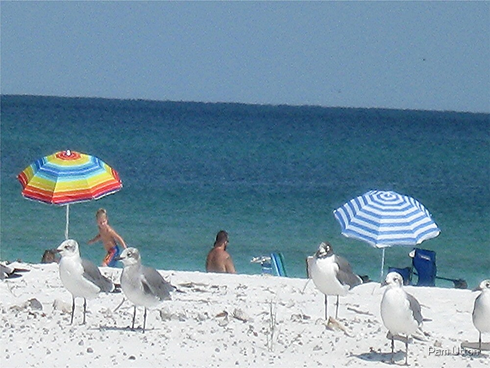 guards at the beach! by Pam Utton
